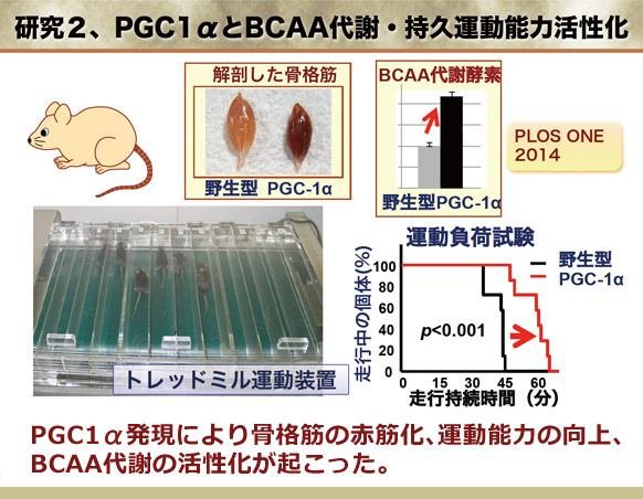 figure01_01