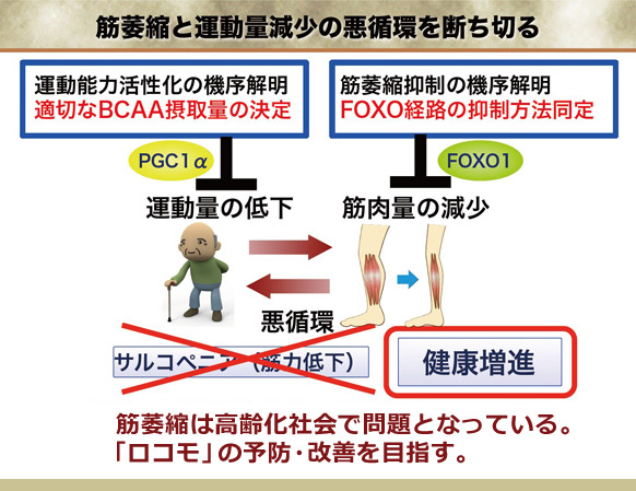figure06_01